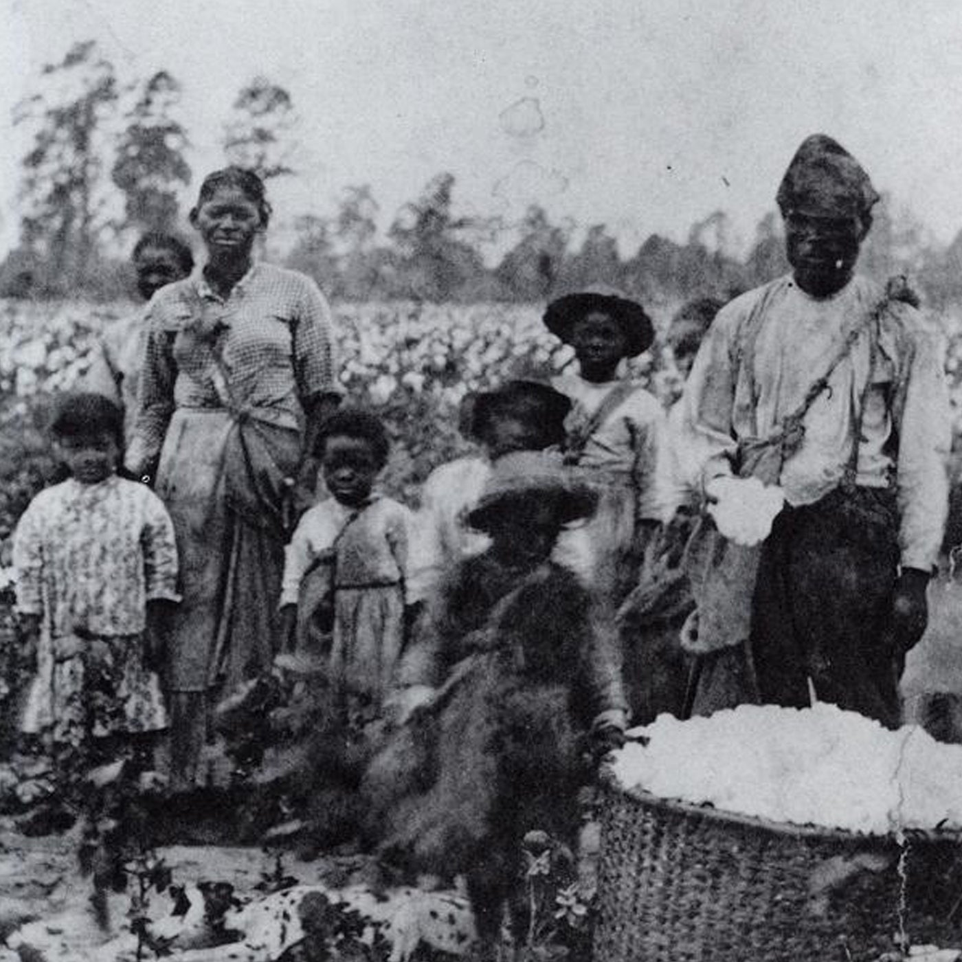 historical image of black slaves in a field