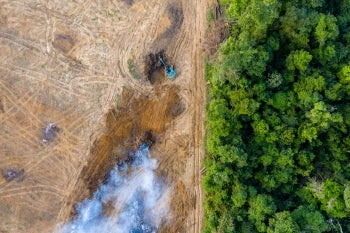 Image of the Amazon rainforest, one half in good condition with green trees, other half has been cleared completely only dirt and smoke remaining