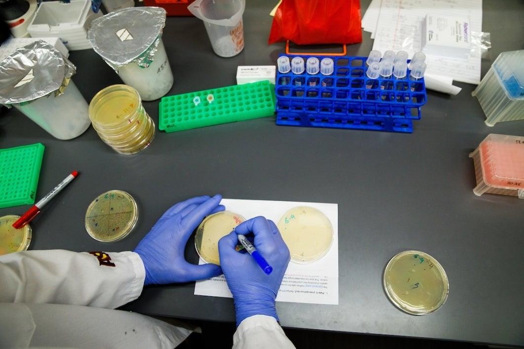 John McCutcheon lab at ASU Biodesign Institute