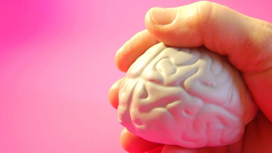 A hand holds a toy brain