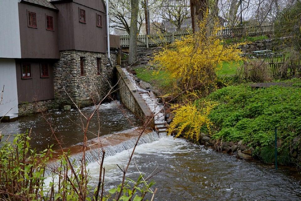 Town Brook, Plymouth, Massachusetts