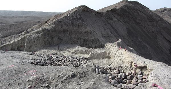 Bokol Dora field site