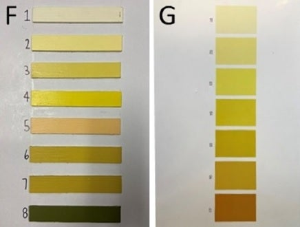 two urine color charts side by side, the one on the left depicting eight colors and the one on the right depicting seven colors, each color indicating a different level of hydration